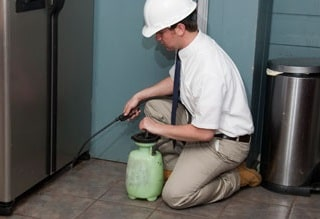 pest-control-inspection