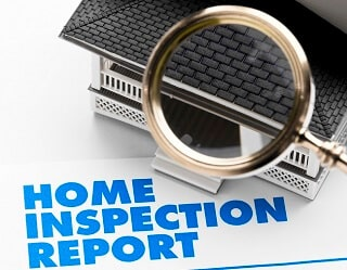 Pest Inspection Report