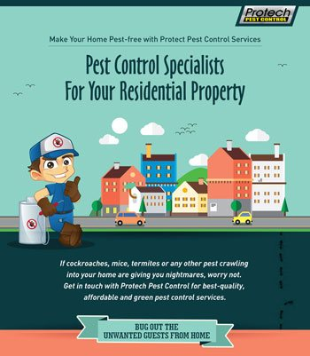 Pest Control Specialists For Your Residential Property