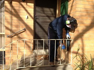 termite inspection melbourne